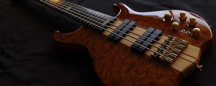 Africa-I 5 strings | Deluxe version with Elm burl